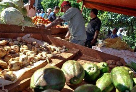 compra-alimentos-mayor-gasto-cubanos_PREIMA20110217_0009_5