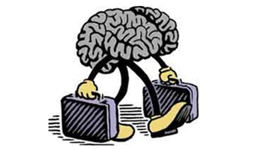 fuga_cerebro1